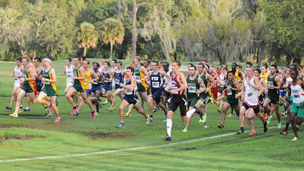 usf invitational cross country meet