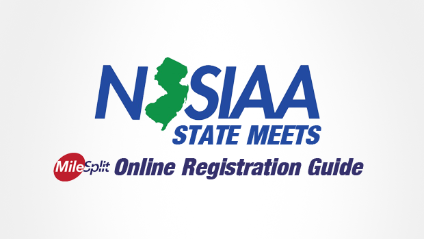 how to pay registration online nj